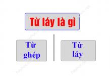 tu-lay-la-gi-tac-dung-cua-tu-lay